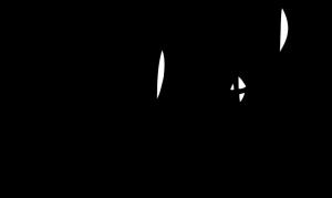 764px-Umberto_Eco_signature_svg