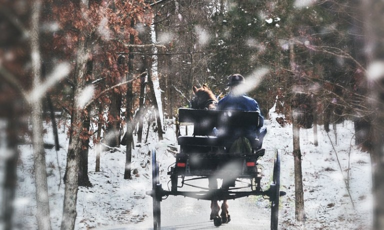 Amish man in a buggy during a snow storm.