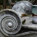 Porfyro-potami-psichogiosbooks